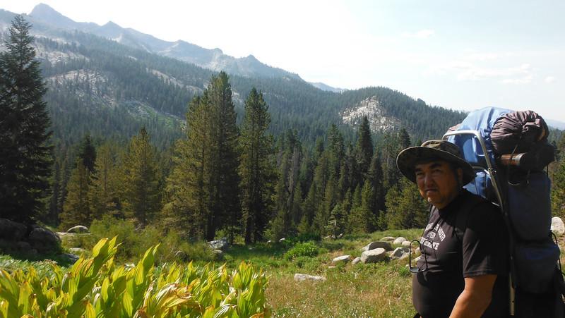 sequoia 135.JPG