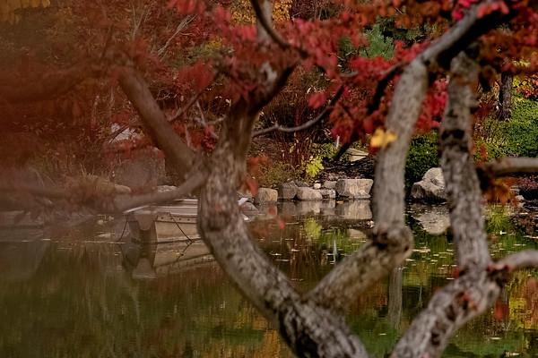 Anderson Gardens Fall