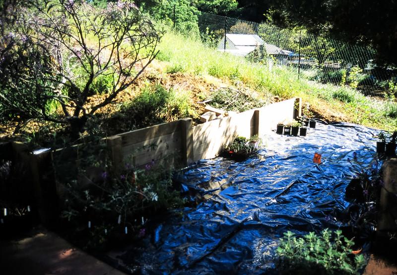 1991-1992 Building 111 Vaca Creek Way-115.jpg