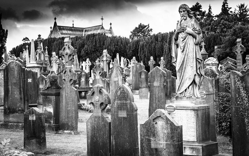 Ireland 2014-1287-Silver.jpg
