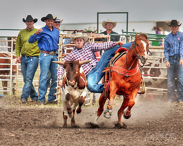The Art of Rodeo