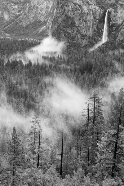Shifting Mists