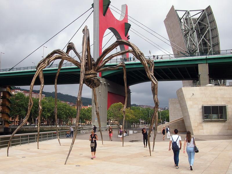 P7215760-spider.JPG