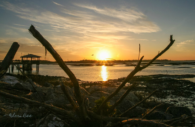 Soaring Sunrise by Lori Bee.jpg