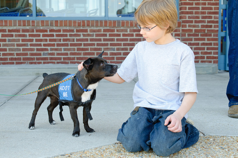 20110312 PetSmart Adoption Event-49.jpg