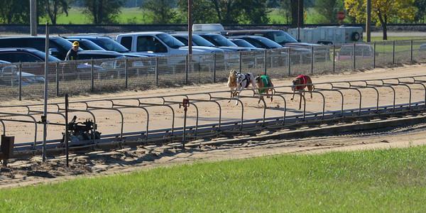 Race 18