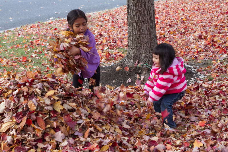 Autumn-Cleaning-2013-11.jpg