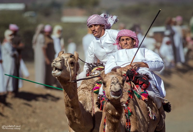 IMGL0217-1- Camel Race.jpg