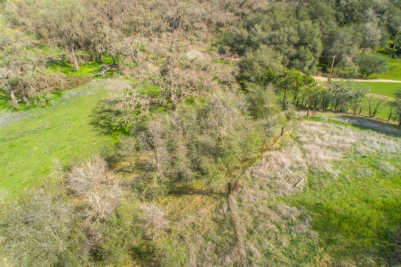3165 Meadow Creek Ln-19.jpg