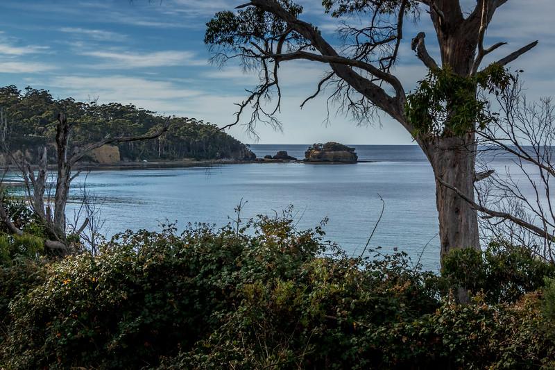 Tasman NP, Tasmania
