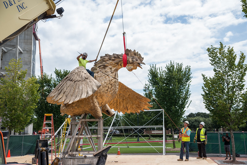 Christopher Cameron secures the head onto the massive gamecock sculpture during installation outside  Williams-BriceStadium in the center of the Lloyd Family Courtyard on Sept.10, 2020. JohnA. Carlos II/Special to The Post and Courier