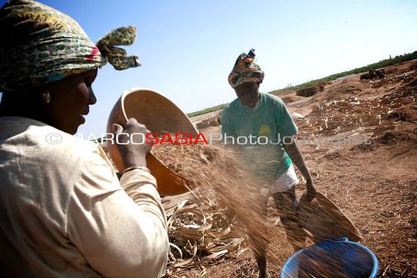 Senegal Sloow food Cous.cous.Joal fadiouth