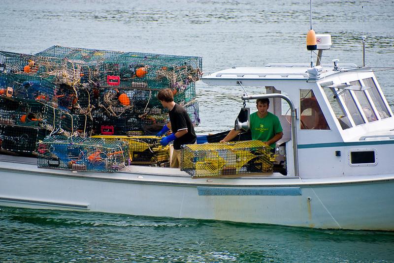 Lobsterboat hauling traps near Tenants Harbor, Maine.