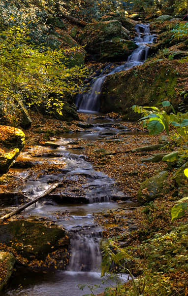 1082 - Autumn 2016 - Mill Creeks Falls Long View (p).jpg