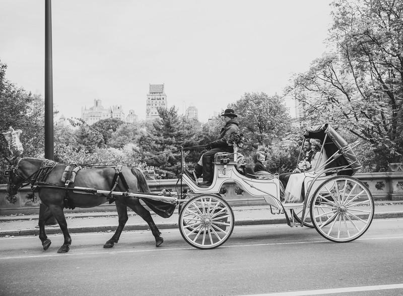 Central Park Wedding - Kevin & Danielle-11.jpg