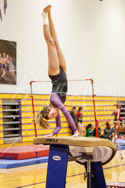 2018-01-17 Gymnastics vs Wayne