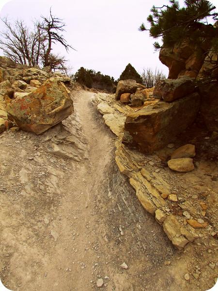 Local Hikes (951).JPG