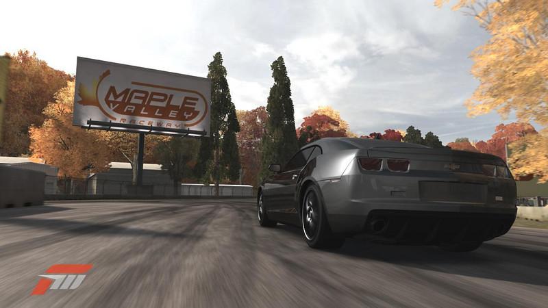 Maple Camaro.jpg