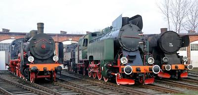 Poland - Steam survivors, 2011