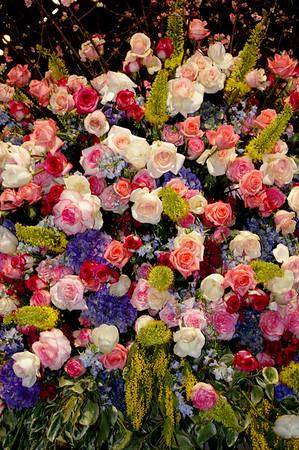 Philadelphia Flower Show 3 2 09