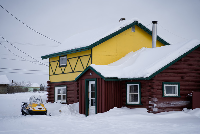 Tundra Yellow