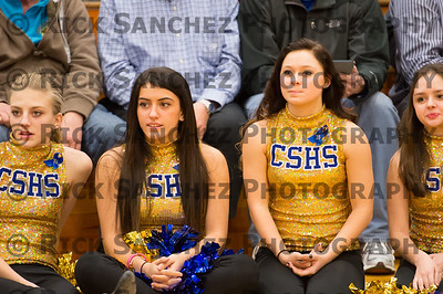 02-15-13 Sandburg Sr Night BBall Cheer Pom