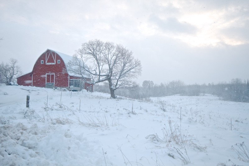 Barn red in snow CR47 Sax-Zim Bog MN IMG_8333.jpg