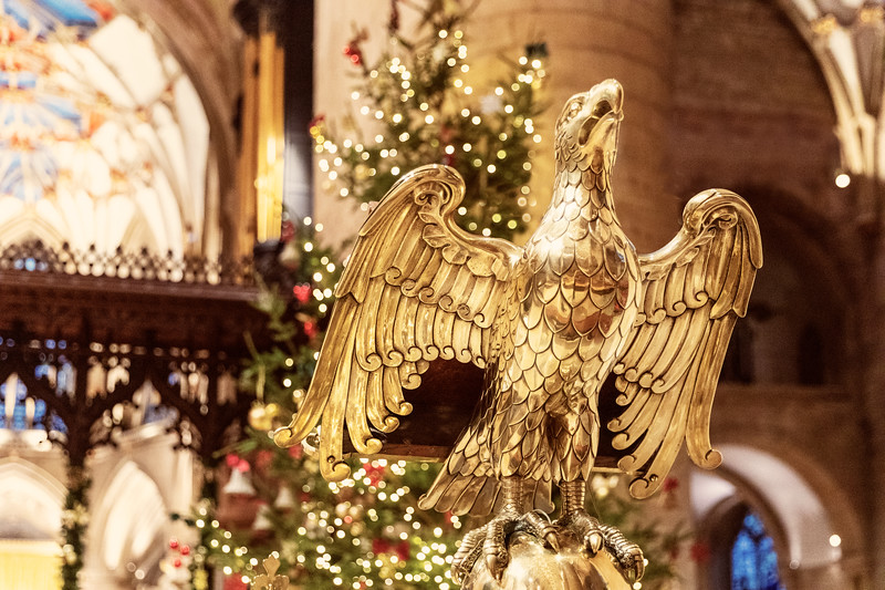 The eagle has landed - Tewksbury Abbey, Gloucestershire