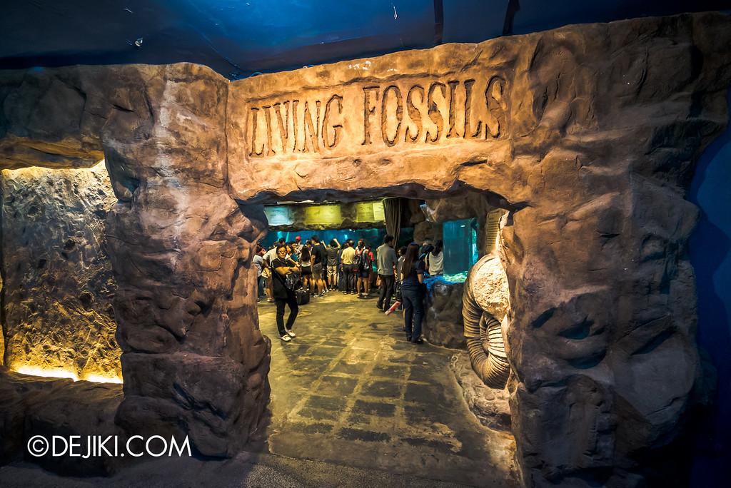 Underwater World Singapore - Living fossils
