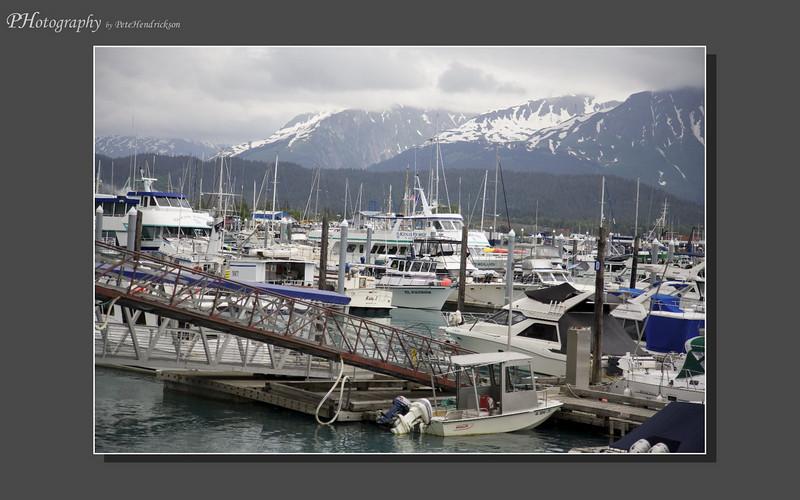 My Alaska 12-08-118.jpg