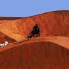 Navajo Sheep Herder