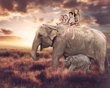 Hummel Kids Wild Fantasy's