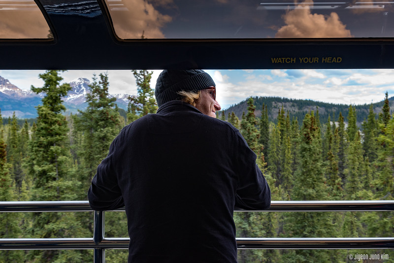 Denali Star Train-6108996-Juno Kim.jpg