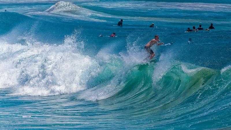 Our Ocean Environment 0118