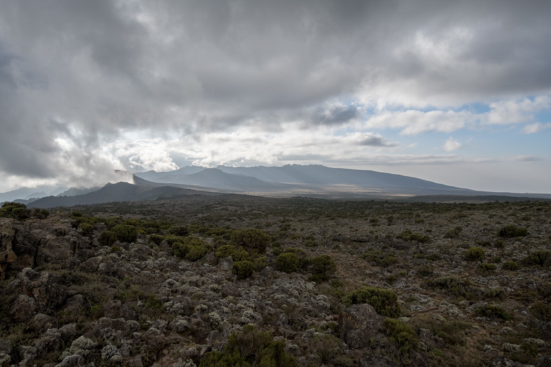 Kilimanjaro_Feb_2018-40.jpg