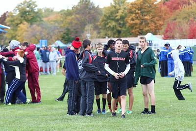 Boys' Race - 2013 MHSAA XC Regional D1-8 (Lake St. Clair Metropark)