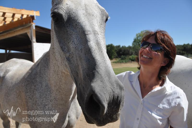 EB&Horses-007.jpg