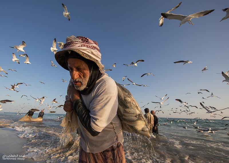 Sardine Season (47)- Dhofar.jpg