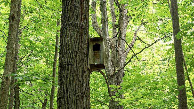 Ontario-Brampton-Claireville-Conservation-Area15.jpg