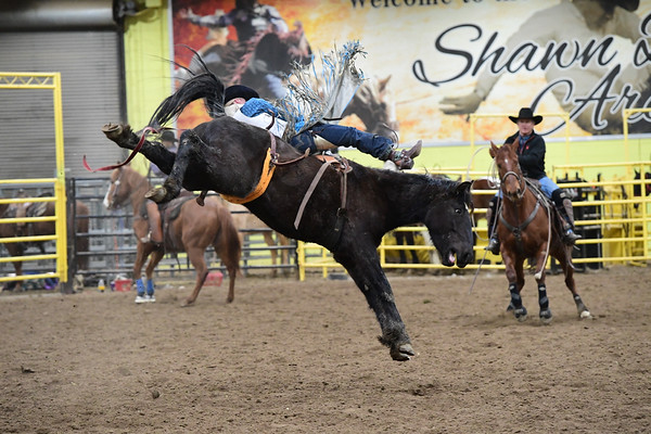 Bareback, Saddle bronc & Pick Up Man School - Feb. 20