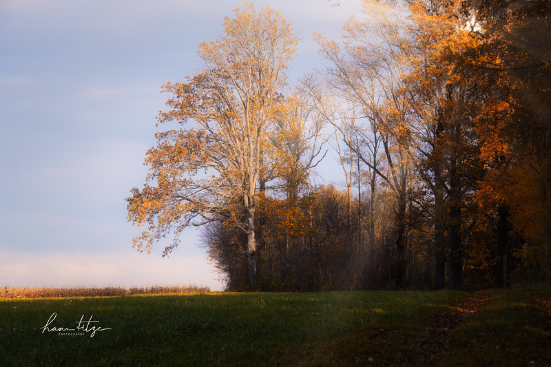 Herbst - good time for photographers