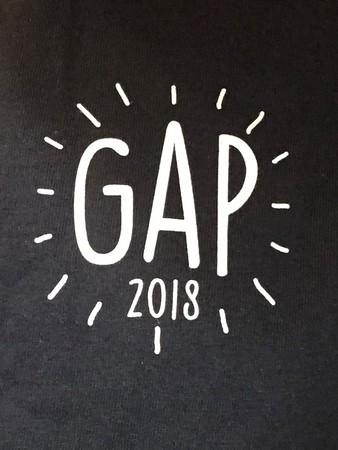 GAP 2018