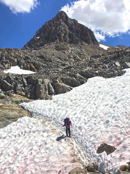 Muir Pass snowfields.jpg