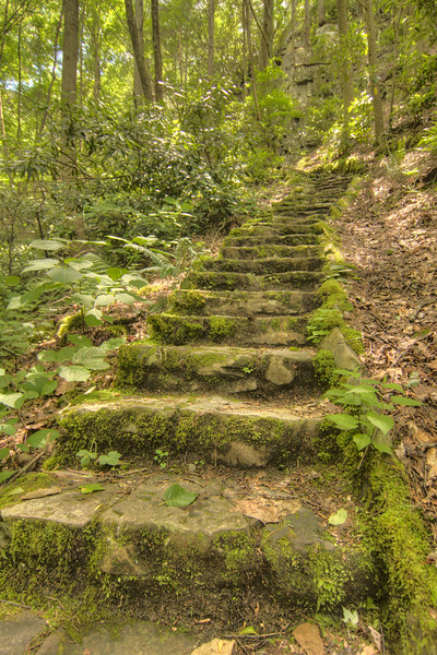 Moss-covered stone steps lead up to a waterfall at Backbone Rock Recreation Area, located in Tennessee near Damascus, VA on Friday, June 14, 2013. Copyright 2013 Jason Barnette
