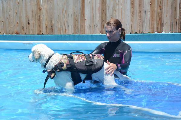 Pool - 26 May 2012