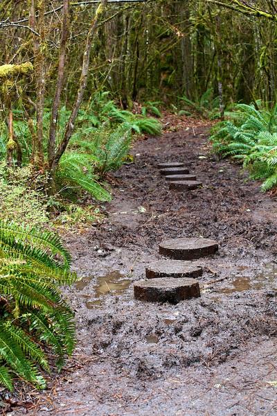 Tualatin Valley Nature Center  4046.jpg