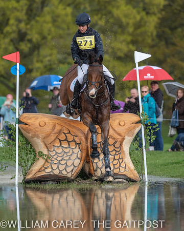 2019-05-11 Advanced XC at The Dodson and Horrell Chatsworth International Horse Trials