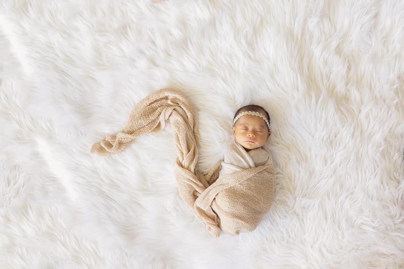baby-evelyn+jocelyn-1550.jpg