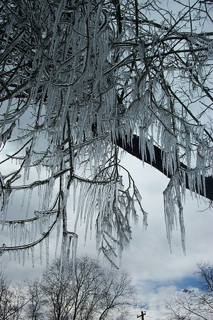 Snow 2004