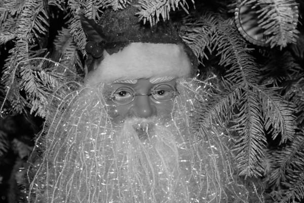 2008 Buras Christmas